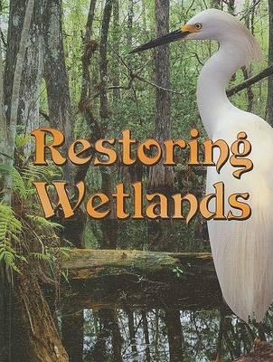 Restoring Wetlands by Jeanne Sturm