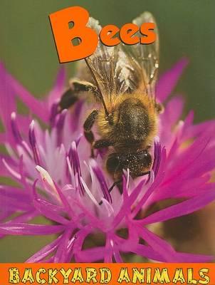 Bees by Heather C. Hudak