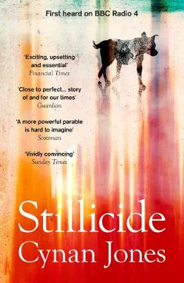 Stillicide by Cynan Jones