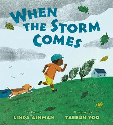 When the Storm Comes by Linda Ashman