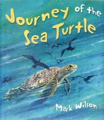 Journey of the Sea Turtle book