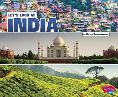 India by Chitra Soundararahja