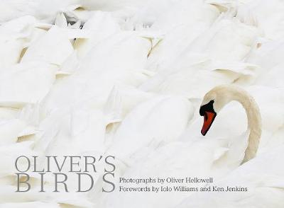 Oliver's Birds: By Oliver Hellowell by Oliver Hellowell