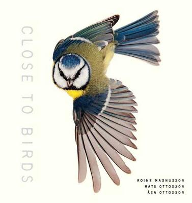 Close to Birds: An Intimate Look at Our Feathered Friends by Roine Magnusson