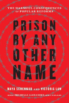 Prison by Any Other Name: The Harmful Consequences of Popular Reforms by Maya Schenwar