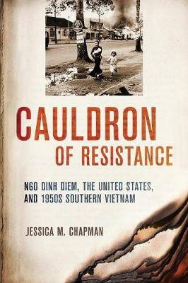 Cauldron of Resistance by Jessica M. Chapman