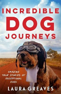 Incredible Dog Journeys by Laura Greaves