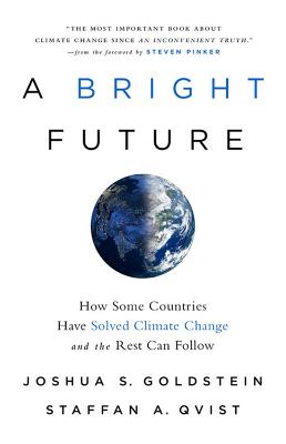 A Bright Future: How Some Countries Have Solved Climate Change and the Rest Can Follow by Joshua S. Goldstein