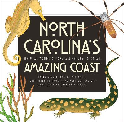 North Carolina's Amazing Coast by George Davidson