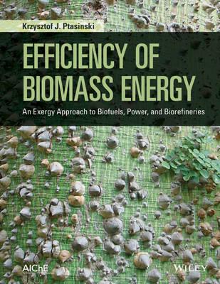 Efficiency of Biomass Energy by Krzysztof J. Ptasinski