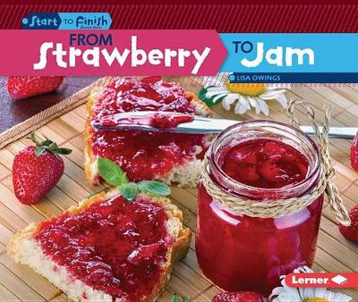 From Strawberry to Jam by Lisa Owings