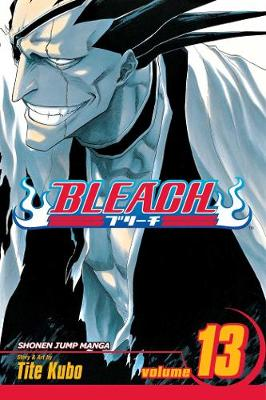 Bleach, Vol. 13 by Rebecca Lim