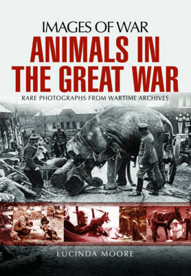 Animals in the Great War by Lucinda Moore