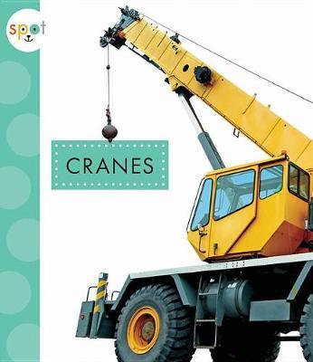 Cranes by Mari C Schuh