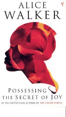 Possessing The Secret Of Joy book