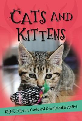 It's All About... Cats and Kittens by Kingfisher Books