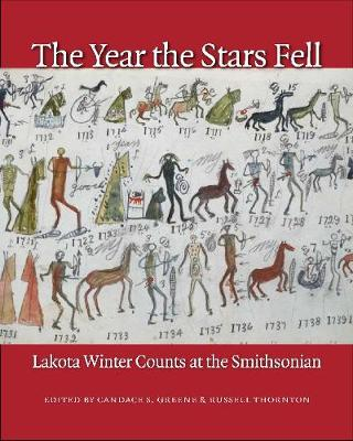 Year the Stars Fell book