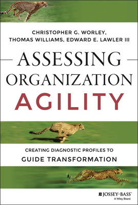 Assessing Organization Agility by Christopher G Worley