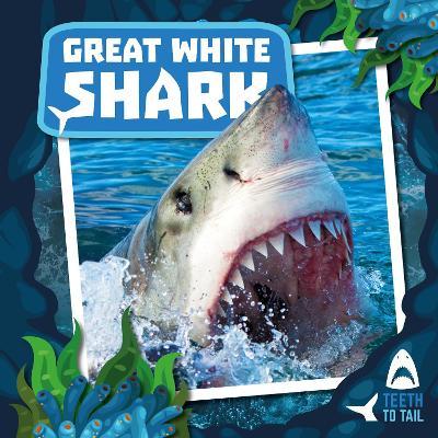 Great White Shark book