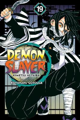 Demon Slayer: Kimetsu no Yaiba, Vol. 19 book