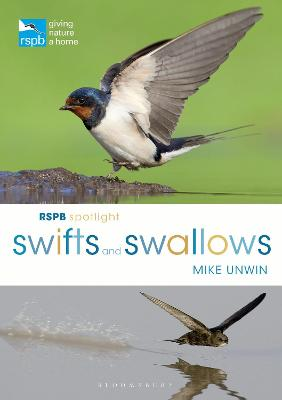 Rspb Spotlight Swifts and Swallows by Mike Unwin