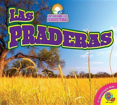 Las Praderas (Grasslands) by Alexis Roumanis