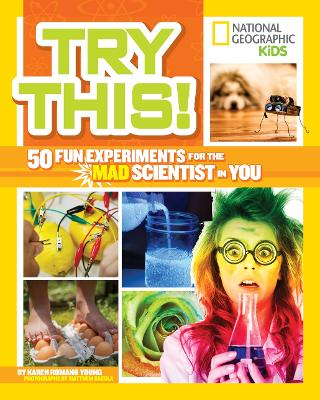 Try This! by Karen Romano Young