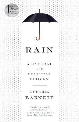 Rain by Cynthia Barnett