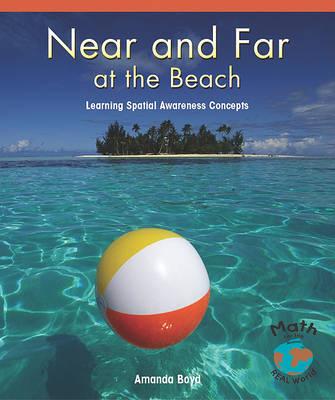 Near and Far at the Beach by Amanda Boyd