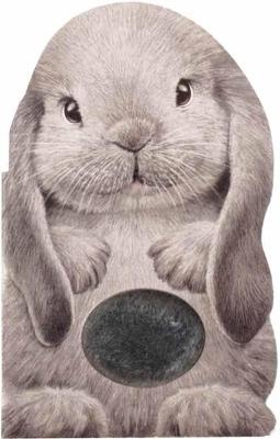 Furry Bunny by Annie Auerbach