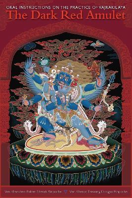 Dark Red Amulet book