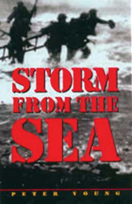 Storm from the Sea by Peter Young