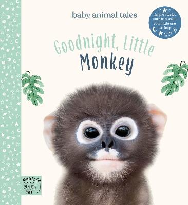 Goodnight, Little Monkey book