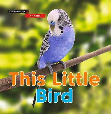 Let's Read: This Little Bird by Sasha Morton