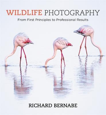 Wildlife Photography by Richard Bernabe