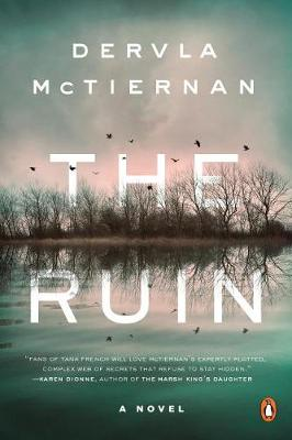 The Ruin by Dervla McTiernan