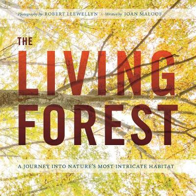 The Living Forest by Robert Llewellyn