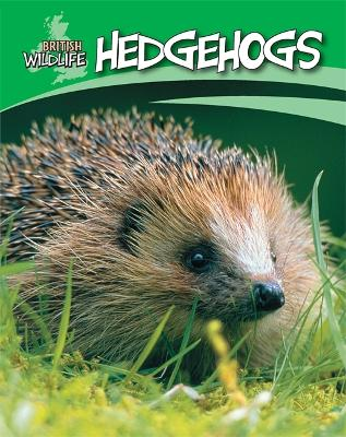 British Wildlife: Hedgehogs book