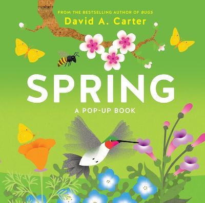 Spring: A Pop-up Book book