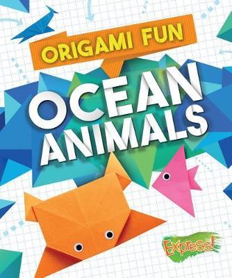 Origami Fun by Robyn Hardyman