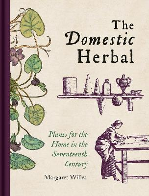 Domestic Herbal, The: Plants for the Home in the Seventeenth Century by Margaret Willes