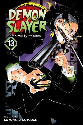 Demon Slayer: Kimetsu no Yaiba, Vol. 13 book