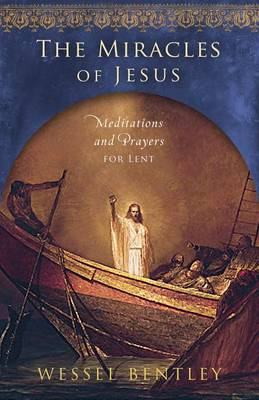 The Miracles of Jesus by Wessel Bentley