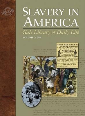 Slavery in America by Professor Orville Vernon Burton