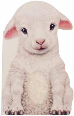 Furry Lamb by Annie Auerbach