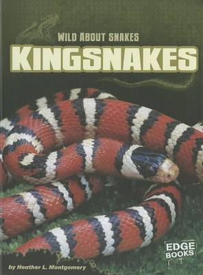 Kingsnakes by Heather L Montgomery
