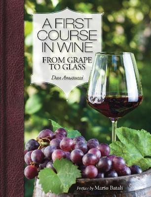 A First Course in Wine by Dan Amatuzzi