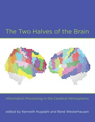 Two Halves of the Brain by Kenneth Hugdahl