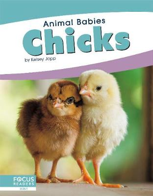 Animal Babies: Chicks by Kelsey Jopp