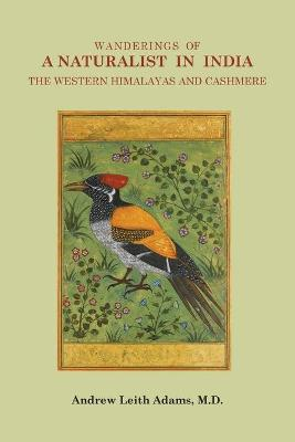 Wanderings of a Naturalist in India: The Western Himalayas and Cashmere by Andrew Leith Adams